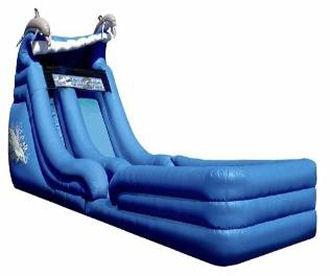 18' Dolphin Super Splash Down Water Slide with Pool Rental - Hop On